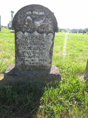 ROBINSON, ADELIA - Union County, Ohio | ADELIA ROBINSON - Ohio Gravestone Photos