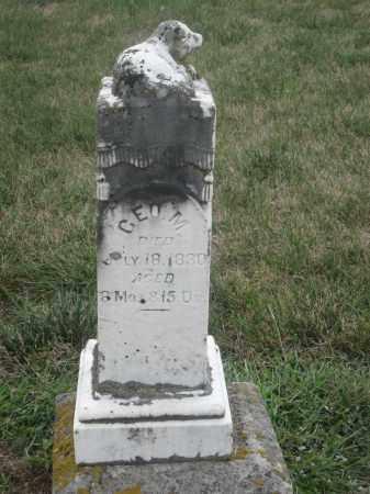 ROBINSON, GEORGE M. - Union County, Ohio | GEORGE M. ROBINSON - Ohio Gravestone Photos