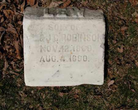 ROBINSON, LEW - Union County, Ohio | LEW ROBINSON - Ohio Gravestone Photos