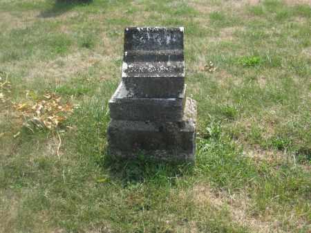 ROBINSON, MINA LETITIA - Union County, Ohio | MINA LETITIA ROBINSON - Ohio Gravestone Photos