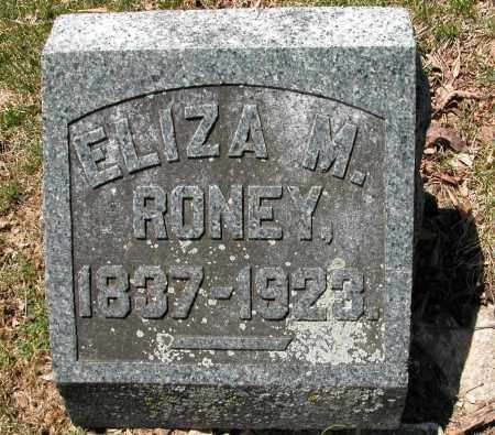 RONEY, ELIZA M. - Union County, Ohio | ELIZA M. RONEY - Ohio Gravestone Photos
