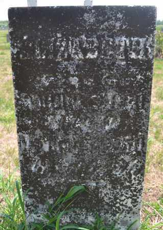 SAGER, ELIZABETH - Union County, Ohio | ELIZABETH SAGER - Ohio Gravestone Photos