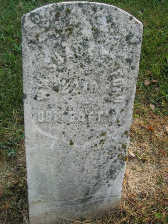 SCHACKELFORD, WILLIAM - Union County, Ohio | WILLIAM SCHACKELFORD - Ohio Gravestone Photos