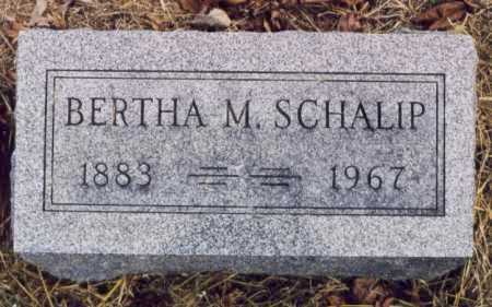 SCHALIP, BERTHA M - Union County, Ohio | BERTHA M SCHALIP - Ohio Gravestone Photos