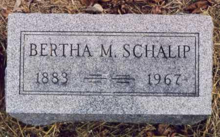 SCHALIP, BERTHA M - Union County, Ohio | BERTHA M SCHALIP - Ohio Gravestone Photos