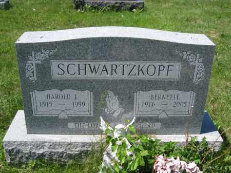 SCHWARTZKOPF, BERNETTE - Union County, Ohio | BERNETTE SCHWARTZKOPF - Ohio Gravestone Photos