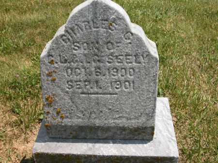 SEELY, CHARLES G. - Union County, Ohio   CHARLES G. SEELY - Ohio Gravestone Photos