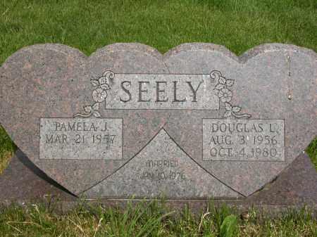 SEELY, DOUGLAS L. - Union County, Ohio | DOUGLAS L. SEELY - Ohio Gravestone Photos
