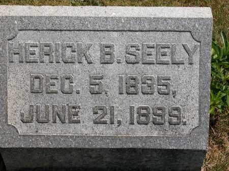 SEELY, HERICK B. - Union County, Ohio | HERICK B. SEELY - Ohio Gravestone Photos
