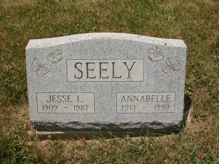 SEELY, JESSE L. - Union County, Ohio | JESSE L. SEELY - Ohio Gravestone Photos