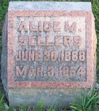 SELLERS, ALICE M - Union County, Ohio | ALICE M SELLERS - Ohio Gravestone Photos