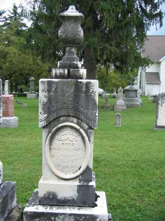 SHIPLEY, BENEDICT - Union County, Ohio | BENEDICT SHIPLEY - Ohio Gravestone Photos