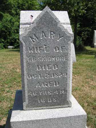 SKIDMORE, MARY - Union County, Ohio   MARY SKIDMORE - Ohio Gravestone Photos