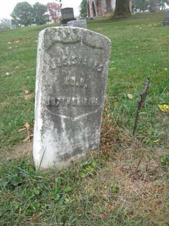 SPARKS, JAMES - Union County, Ohio | JAMES SPARKS - Ohio Gravestone Photos