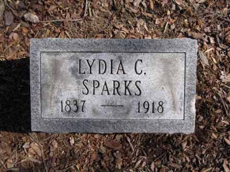 SPARKS, LYDIA C. - Union County, Ohio | LYDIA C. SPARKS - Ohio Gravestone Photos