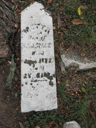 SPARKS, METTA - Union County, Ohio | METTA SPARKS - Ohio Gravestone Photos