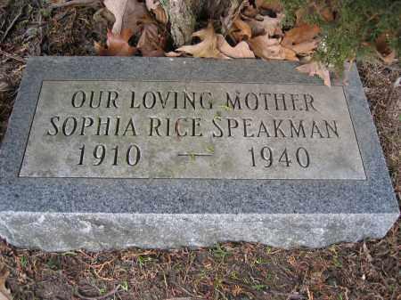 SPEAKMAN, SOPHIA RICE - Union County, Ohio | SOPHIA RICE SPEAKMAN - Ohio Gravestone Photos