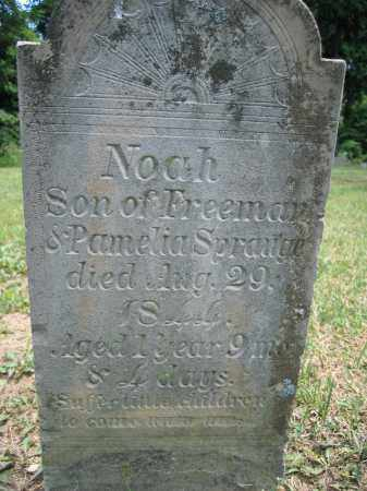 SPRAUGE, NOAH - Union County, Ohio | NOAH SPRAUGE - Ohio Gravestone Photos