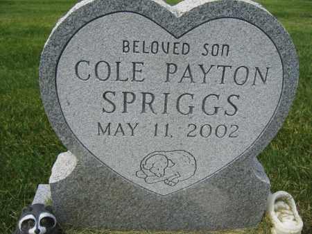 SPRIGGS, COLE PAYTON - Union County, Ohio | COLE PAYTON SPRIGGS - Ohio Gravestone Photos
