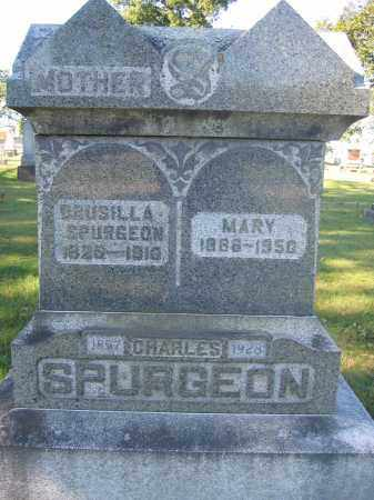 SPURGEON, MARY - Union County, Ohio | MARY SPURGEON - Ohio Gravestone Photos
