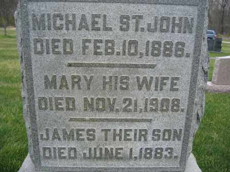 ST. JOHN, MICHAEL - Union County, Ohio | MICHAEL ST. JOHN - Ohio Gravestone Photos