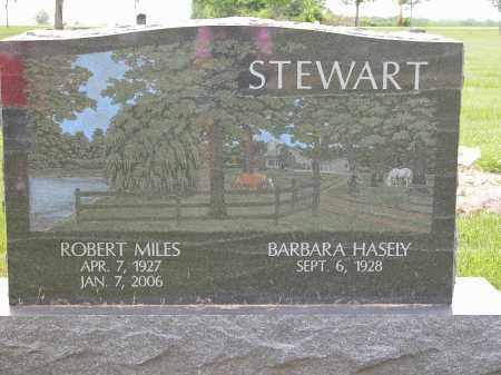 STEWART, ROBERT MILES - Union County, Ohio | ROBERT MILES STEWART - Ohio Gravestone Photos