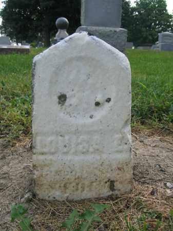 STOUT, LOUISA E. - Union County, Ohio | LOUISA E. STOUT - Ohio Gravestone Photos