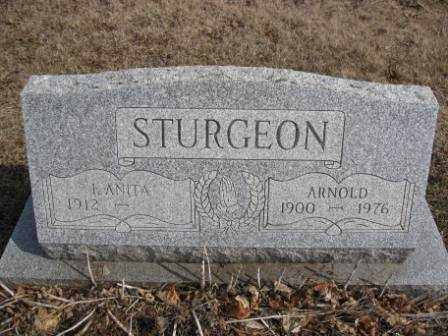 STURGEON, ARNOLD - Union County, Ohio | ARNOLD STURGEON - Ohio Gravestone Photos