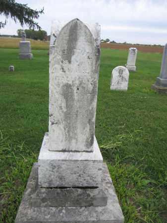 TALLMAN, NEWTIN - Union County, Ohio | NEWTIN TALLMAN - Ohio Gravestone Photos