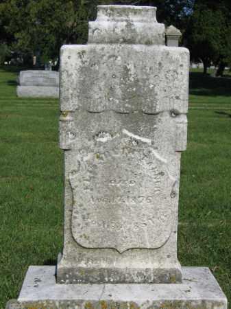 TANNER, ELIZABETH - Union County, Ohio | ELIZABETH TANNER - Ohio Gravestone Photos