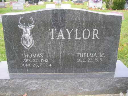 TAYLOR, THOMAS L. - Union County, Ohio | THOMAS L. TAYLOR - Ohio Gravestone Photos