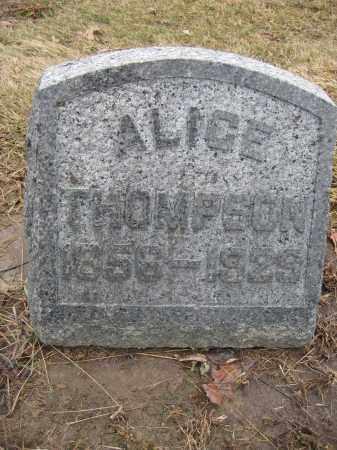 THOMPSON, ALICE - Union County, Ohio | ALICE THOMPSON - Ohio Gravestone Photos