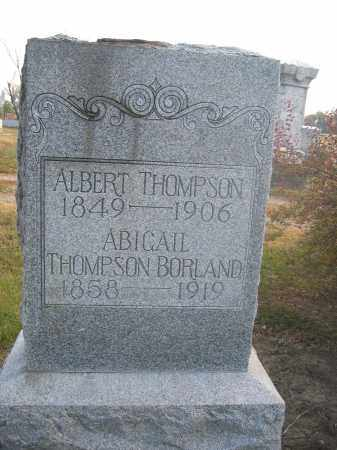 THOMPSON, ALBERT - Union County, Ohio | ALBERT THOMPSON - Ohio Gravestone Photos