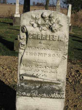 THOMPSON, CHALRES A. - Union County, Ohio | CHALRES A. THOMPSON - Ohio Gravestone Photos
