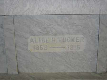 TUCKER, ALICE G. - Union County, Ohio | ALICE G. TUCKER - Ohio Gravestone Photos