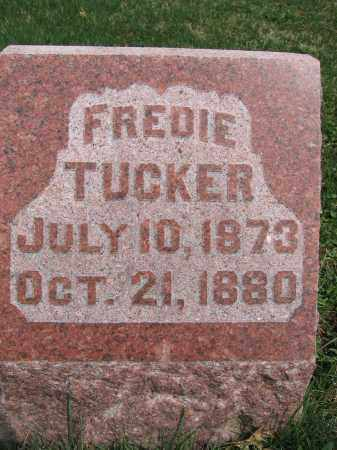 TUCKER, FREDIE - Union County, Ohio | FREDIE TUCKER - Ohio Gravestone Photos