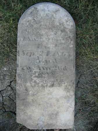 TURNER, EDWIN - Union County, Ohio   EDWIN TURNER - Ohio Gravestone Photos