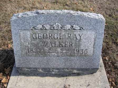 WALKER, GEORGE RAY - Union County, Ohio | GEORGE RAY WALKER - Ohio Gravestone Photos