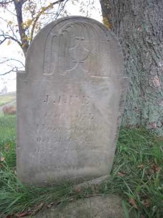 WARE, JANE REED - Union County, Ohio | JANE REED WARE - Ohio Gravestone Photos