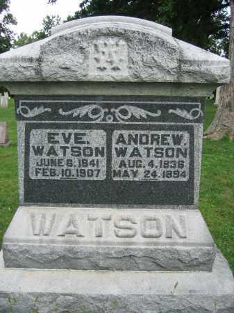 WATSON, ANDREW - Union County, Ohio | ANDREW WATSON - Ohio Gravestone Photos