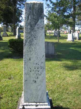 WEAVER, SAMUEL C. - Union County, Ohio | SAMUEL C. WEAVER - Ohio Gravestone Photos