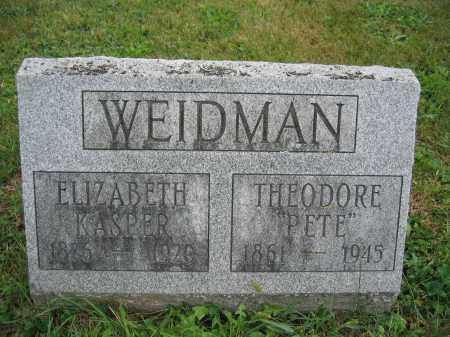 WEIDMAN, THEODORE - Union County, Ohio | THEODORE WEIDMAN - Ohio Gravestone Photos
