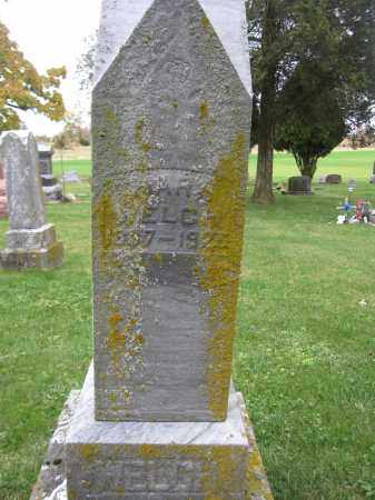 WELCH, MARY - Union County, Ohio | MARY WELCH - Ohio Gravestone Photos
