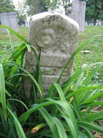 WELLS, ANNA E. - Union County, Ohio | ANNA E. WELLS - Ohio Gravestone Photos