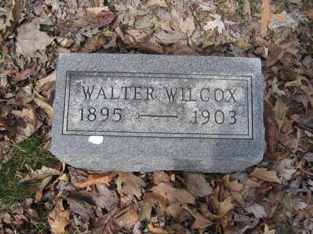 WILCOX, WALTER - Union County, Ohio | WALTER WILCOX - Ohio Gravestone Photos