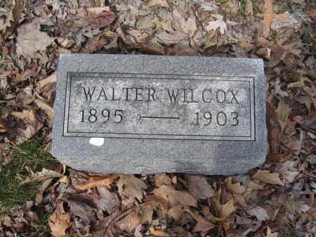 WILCOX, WALTER - Union County, Ohio | WALTER WILCOX - Ohio Gravestone Photos
