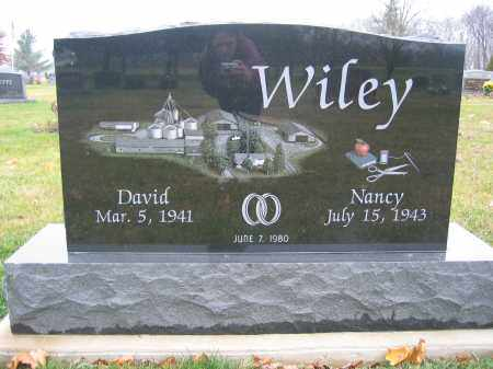 WILEY, DAVID - Union County, Ohio | DAVID WILEY - Ohio Gravestone Photos