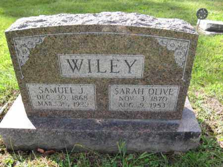 WILEY, SAMUEL J. - Union County, Ohio | SAMUEL J. WILEY - Ohio Gravestone Photos