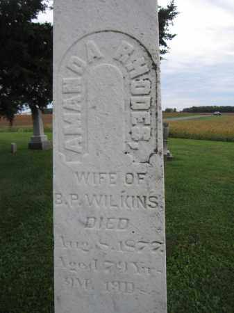 WILKINS, AMANDA RHODES - Union County, Ohio | AMANDA RHODES WILKINS - Ohio Gravestone Photos