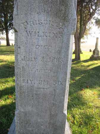 WILKINS, PRISCILLA - Union County, Ohio | PRISCILLA WILKINS - Ohio Gravestone Photos